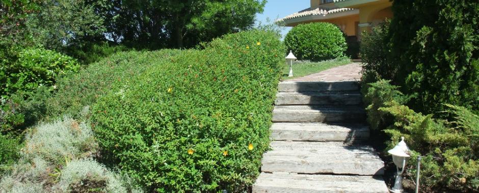 La encina jardineria y paisajismo for Jardineria y paisajismo