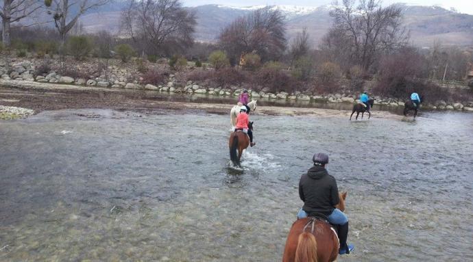Caballos del valle - El valle de los caballos ...