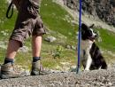 Escapada con tu Perro