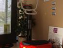 Plataforma Vibratoria X-Well Promix