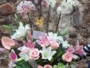 Cesta de flores y plantas de interior