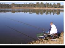 Pesca y caza
