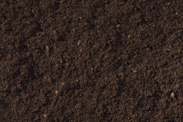 Bioland fabricaci n de tierras y sustratos para jardiner a for Tierra para jardin